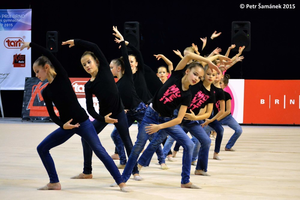 GRAND PRIX Brno TART Cup 2015  27657ecc46a